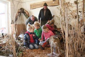 Wild- und Waldschule_8